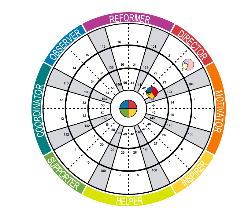 LifeForward Insights wheel 2