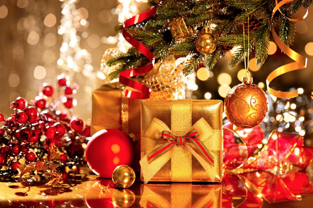LifeForward Christmas coaching offer