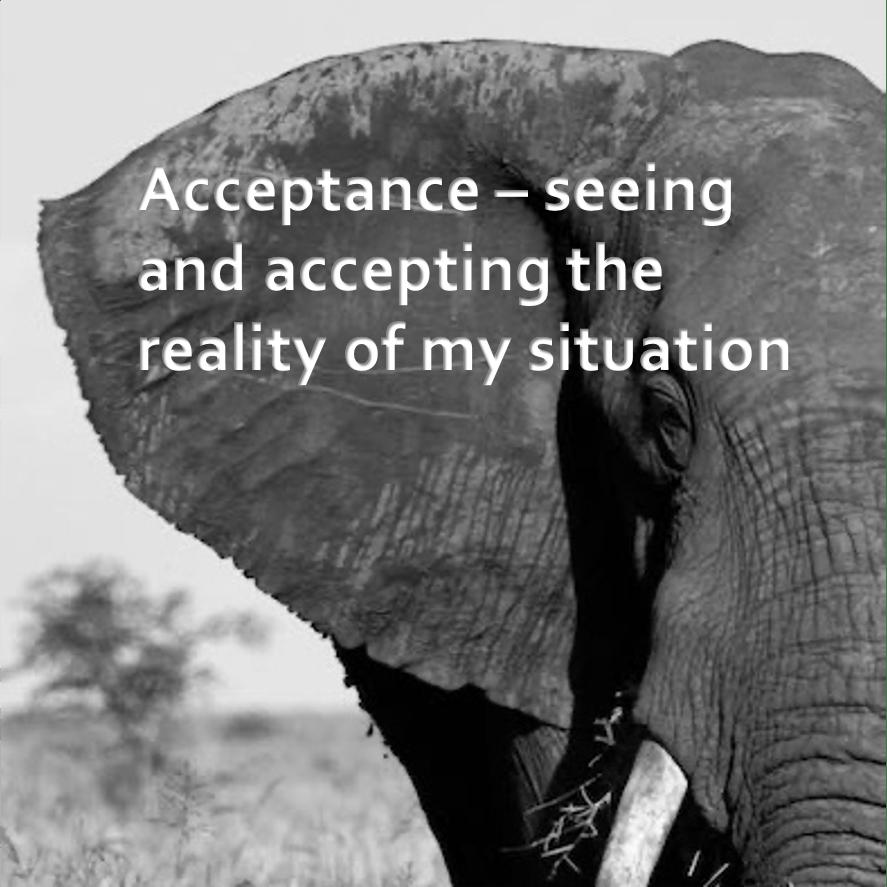 LifeForward Resilience Acceptance