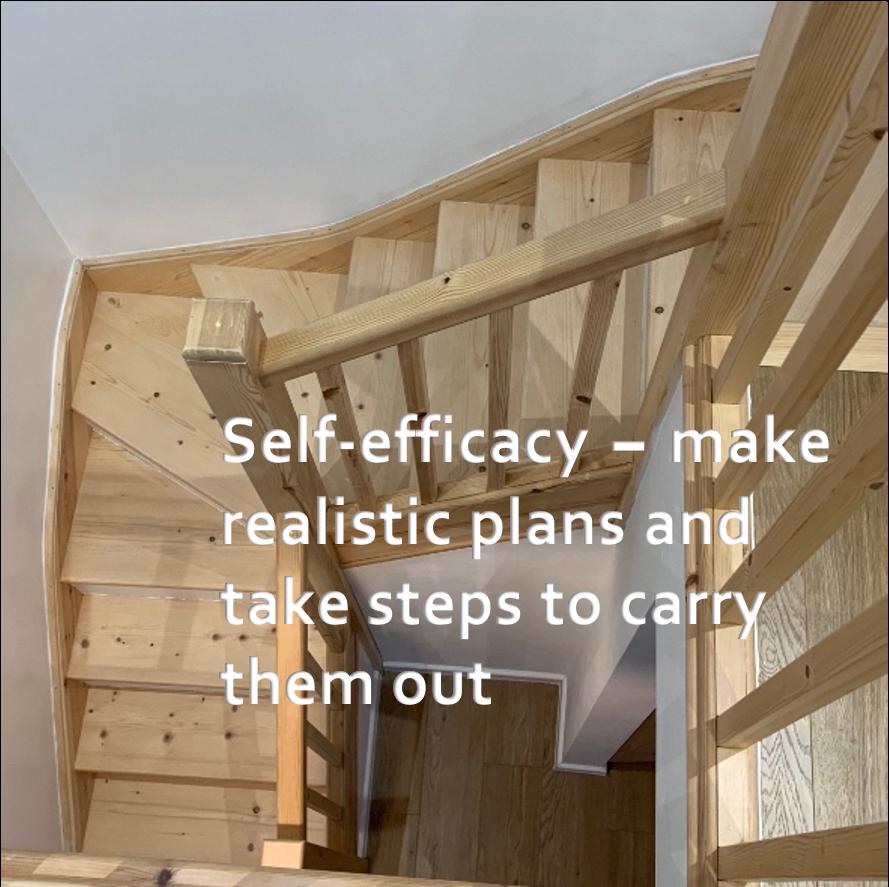 LifeForward Resilience self efficacy
